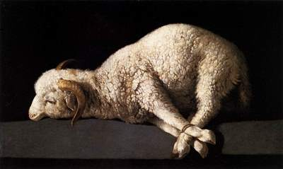 Agnus Dei (Lamb of God) by  Francisco de Zurbaran