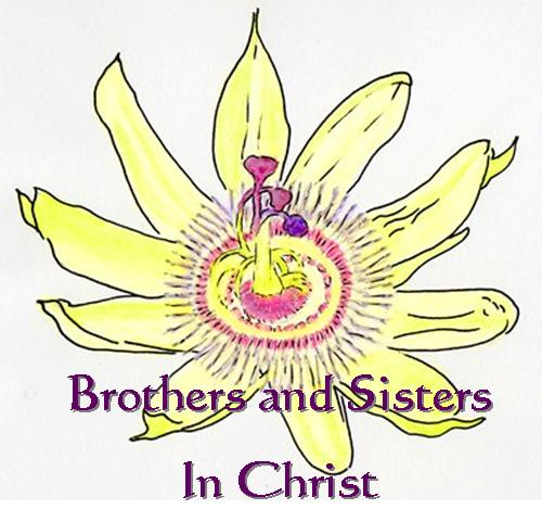 Brothers and Sisters in Christ