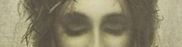St Veronica's Handkerchief - Close Up
